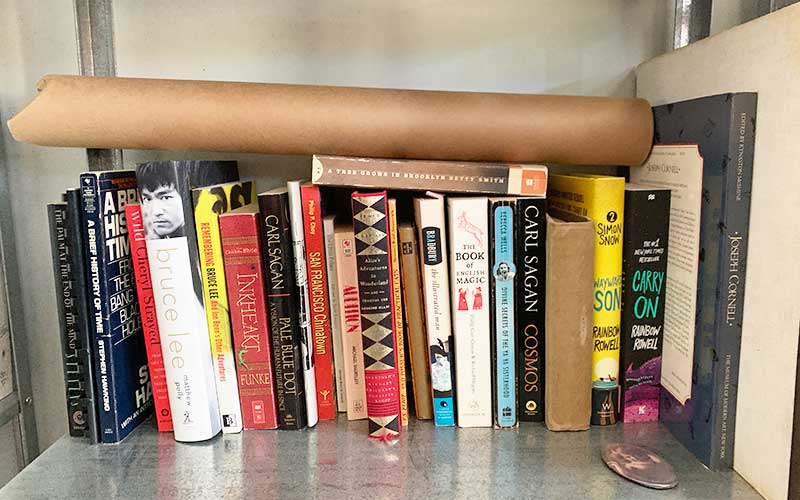 More favorite books on my shelf as a reminder where effective writing started