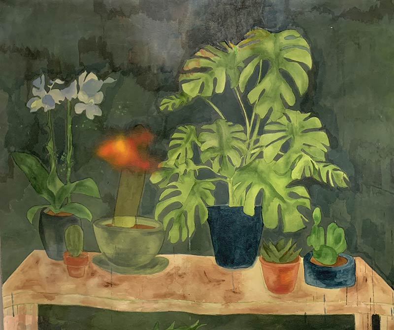 Table garden, from. COVID gardens by Jana Rumberger